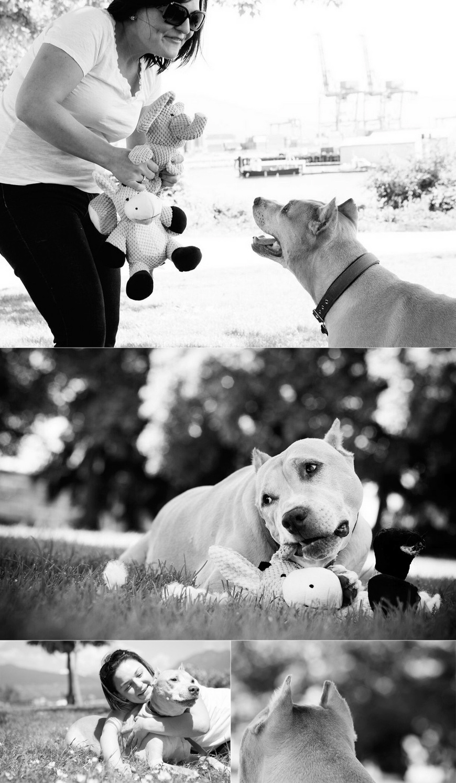 dog photoshoot black and white vancouveer